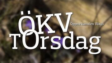 ÖKV Torsdag - Modelltåg