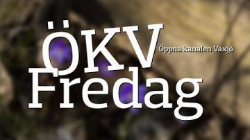 ÖKV Fredag med Musikmagasinet - Erika Hansson
