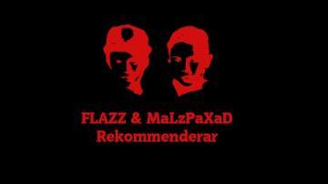 FLAZZ & MaLzPaXaD Rekommenderar GTA V
