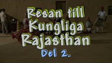 Resan till Rajasthan i Norra Indien, del 2 av 3
