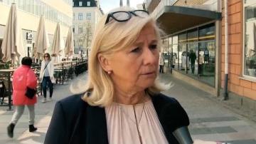 Vårbudgetmotion 2017 - Katarina Brännström