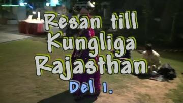 Resan till Rajasthan i Norra Indien, del 1 av 3